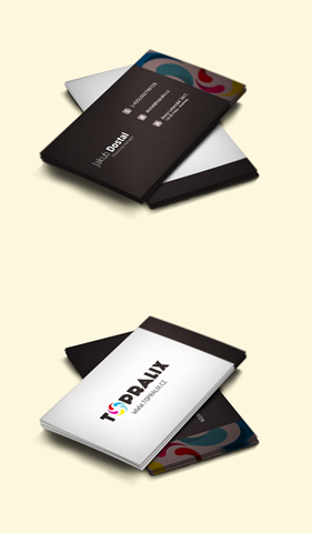 topralix___business_cards_mockup_by_pa3ick-d4xo065