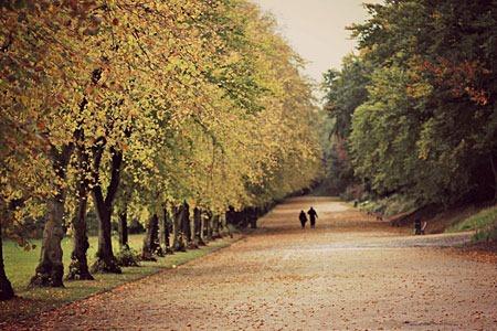 autumn_by_marlasingerbluedress-d5h182i