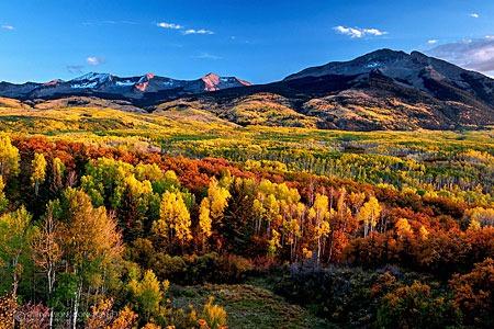 autumn_carpet_by_porbital-d5gu0wj