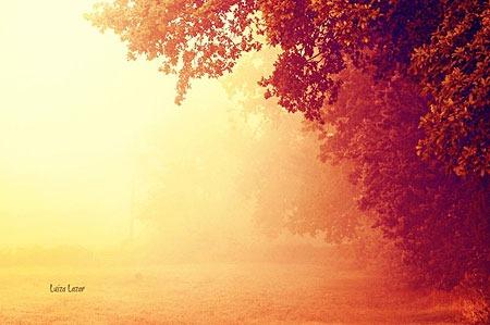 autumn_morning_by_luizalazar-d5h2clh
