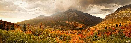 fierce_autumn_by_andrewadkins-d5g3tfu