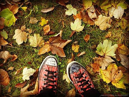 my_autumn_by_jokerismyfreak-d5hvmaz